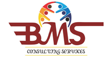 BMS Consulting Services